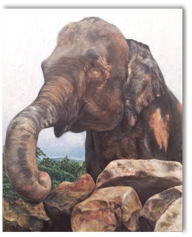 Elefanta feliz - Giambanco